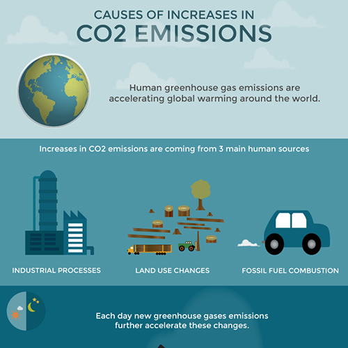 CO2 emissions graphic